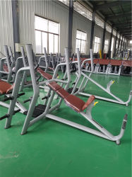 Fitness Equipment Factory Sale Gym Equipment Gym Bench Weight Lifting