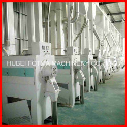 18-300 Ton/ Day Complete Rice Mill/Milling Machine on Turnkey Basis