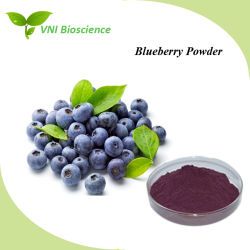 China Blueberry Powder, Blueberry Powder Manufacturers, Suppliers