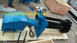 Semi-Submersible Slurry Pumps 65qv-Sp (R)