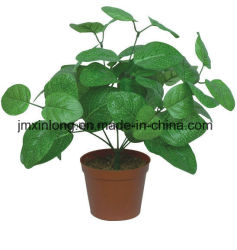 Indoor Decoration Artificial Plant Green Fittonia Leaves