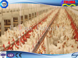 Galvanized Steel Poultry Shed/Chicken House for Wholesale (SSW-H-007)