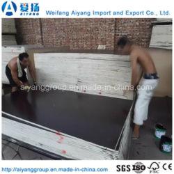 4X8 Construction Formwork Concrete Form Plywood Board