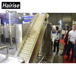 Hairise Overhead Chain Conveyor Belt Machine for Tyre Manufacturing