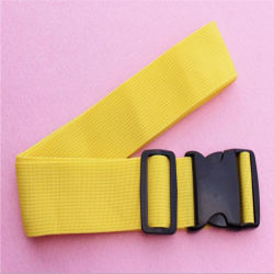 Best Price Polyester Webbing with Plastic Buckle