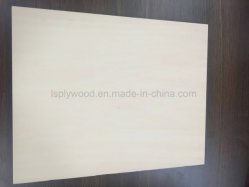 Best Tool Cutting Canadian Maple Beech Plywood Price