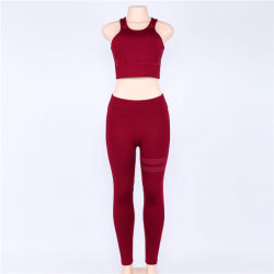 Tights Workout Clothes Sportswear Women Gym Sports Suit Yoga Set