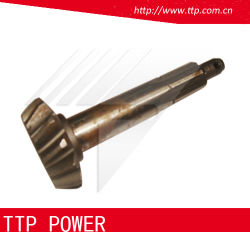 High Quality Motorcycle Parts Tricycle Parts Tricycle Apical Teeth Cg