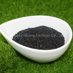 Seaweed Kelp Seaweed Extract Bio Fertilizer Wholesale
