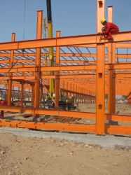 Prefabricated Engineered Steel Structure Shed for Poultry Industry - Chicken Farm Yard