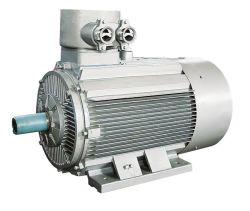 Electric Motor/ Ex Motor/ Motor/ Mine Motor