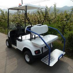 China Gasoline Golf Cart, Gasoline Golf Cart Manufacturers ... on