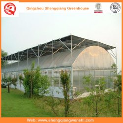 PE Film/Plastic Film Single-Span Film Vegetable Tent for Planting Tomato/Potato & China Plastic Tent Plastic Tent Manufacturers Suppliers | Made ...