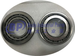 Slurry Pumps Bearing D009