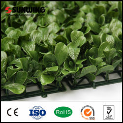 Wholesale Fresh PE Plastic Artificial Plant for Garden Decoration