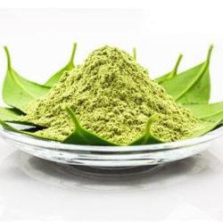 Wholesale Organic Japanese Matcha Green Tea Powder