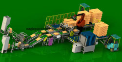 Kinds of Bag, Carton, Box, Drum Palletizing Robot with Ce (design according to your workshop)