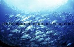 GMP Certified Refined Fish Oil, Refined Cod Liver Oil. Fish Oil ODM, Health Food