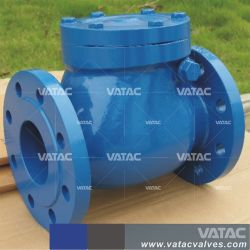 API 6D Industrial Flange or Wafer Cast Iron or Forged Stainless Steel Ball or Swing Check Valve