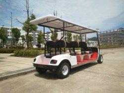 2 Seat Electric Sports Golf Car