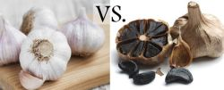 The Fermented Black Garlic Seeds for Best Price