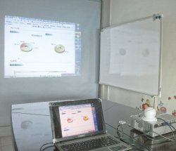 Plug and Play Interactive Whiteboard Best Prices School Teaching Interact Tools for Pupils