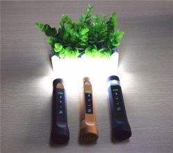 4 In1 More Functions Popular LED Torch Lighting