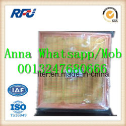 Air Filter C20106 for Man