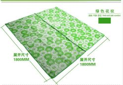 Wholesale Carrying Leisure PP Woven Beach Mat for Children XPE
