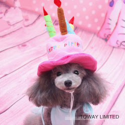 Fashion Dog Holiday Cat Accessories Birthday Cake Pet Hats