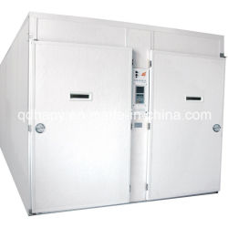 Large Capactiy Automatic Incubator with Prefabricated Hatchery House