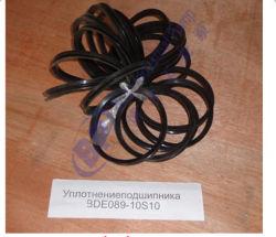 Slurry Pump Bearing Seal Bde089