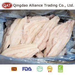High Quality Frozen Big Fat Catfish