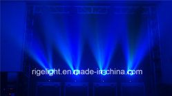 19*12W Hawkeye LED Beam Moving Head Light for Club Stage Light