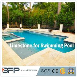 China Swimming Pool Coping Tiles, Swimming Pool Coping Tiles ...
