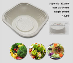 Gh1002 Guanhua Disposal Lunch Box Food Container Bento Case