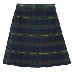 b9b81ee73a Factory Wholesale European and American Plaid Pleated School Girls Mini  Skirt