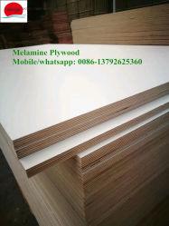 Melamine Plywood Price, 2019 Melamine Plywood Price