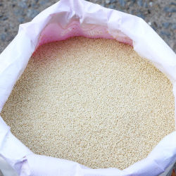 Chinese Hot Selling Market Price Natural Color Good Quality Healthy Organic International Price White Sesame Seeds