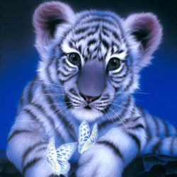 Cute Little Tiger 5D Diamond Painting Frame T001