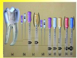 Lab Burrs Tooth Drill Tungsten Steel Dental Burs for Handpiece Polisher