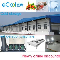 Large Size Low Temperature Cold Room Frozen Storage and Refrigerate Equipment for Fish Processing Factory and Meat Logistics Distribution Center