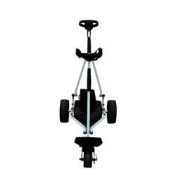 Wholesale Remote Control Electric Golf Trolley 3 Wheel (DG12150-D)