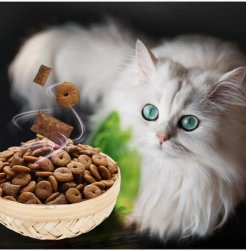 100% Natural Tuna Flavor Dry Cat/Pet Food