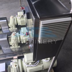 Sanitary High Efficiency Ketchup Transfer Pump Lobe Pump