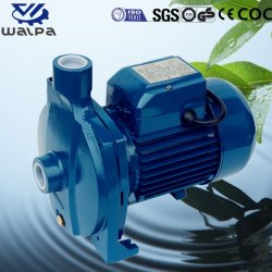 1.5HP Single Impeller Rubber Lined Centrifugal Suction Slurry Pump