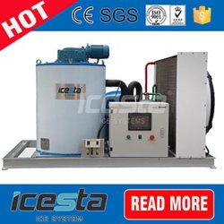 Icesta 15 Tons Fresh Salt Water Containerized Flake Ice Machine Price