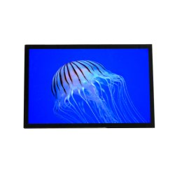 10.1 Inch Sunlight Readable LCD with Capacitive Touchscreen, Lvds/USB Interface