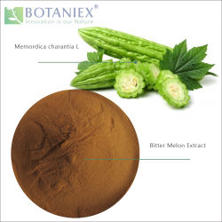 Best Selling Herbal Chinese Natural Good Quality Bitter Melon Extract 20% 10% Charantin (Memordica charantia L)