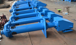 Vertical Single Stage Double Suction Centrifugal Slurry Water Pump